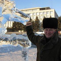 Михаил, 66 лет, Сковородино