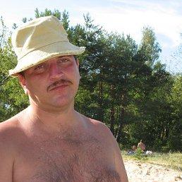 Владимир, 45 лет, Сосновый Бор
