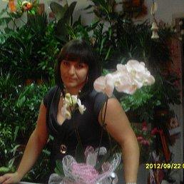 валя, 36 лет, Лубны