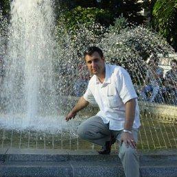 Андрей, 43 года, Самбор