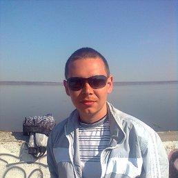 Мишка, 29 лет, Козьмодемьянск