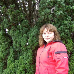 Лариса, 55 лет, Ровеньки