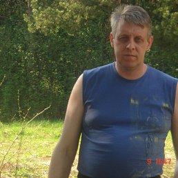 владимир, 49 лет, Струнино