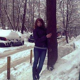 Дарья, 29 лет, Мытищи