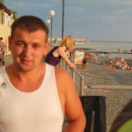 Вася, 27 лет, Виноградов