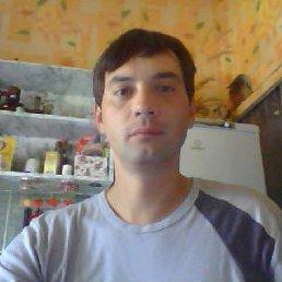 Виталий, 42 года, Кшень
