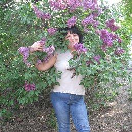 татьяна, 52 года, Песочин