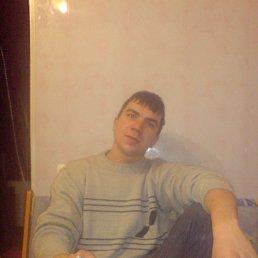 Николай, Царичанка, 31 год