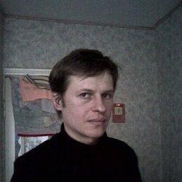 виталий, 43 года, Коростень