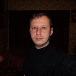 Дмитрий, 36 лет, Любытино