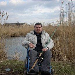 сергей, 42 года, Кривое Озеро