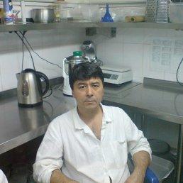 Алишер, 57 лет, Ярославль