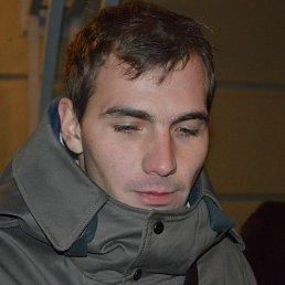 Антон, 29 лет, Кимовск