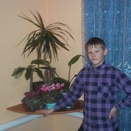 Ярик, 24 года, Богодухов