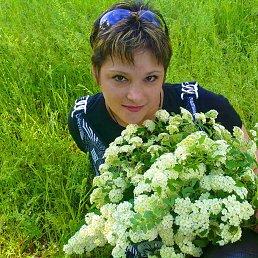 Людмила Матвеева, 44 года, Красный Сулин