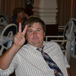 Дмитрий, 39 лет, Пыталово