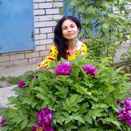 Дина, 42 года, Волгоград