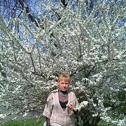 валентина, 63 года, Волноваха