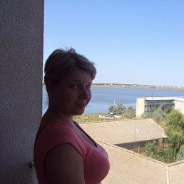 Алёна, 29 лет, Черкассы