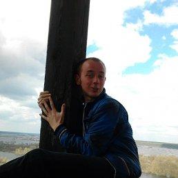 Андрей, 30 лет, Шостка