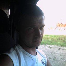 Димулька, 39 лет, Сокольники