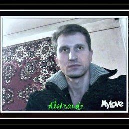 Александр, 44 года, Ингулец