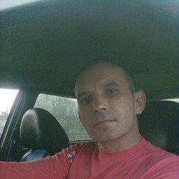 Vladimir, 43 года, Зеленодольск