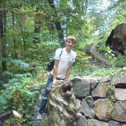 Ілля, 26 лет, Жашков