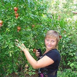 Людмила, 44 года, Антрацит