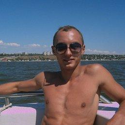 Коля, 27 лет, Белицкое