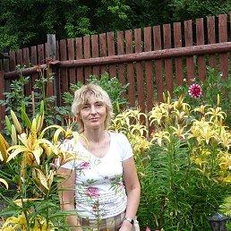 Светлана, 52 года, Иваново