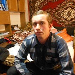 Юрий, 40 лет, Чаплинка