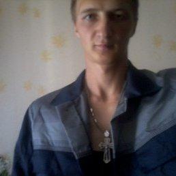 Дмитрий, 33 года, Коблево