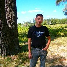 Андрей, 40 лет, Поспелиха