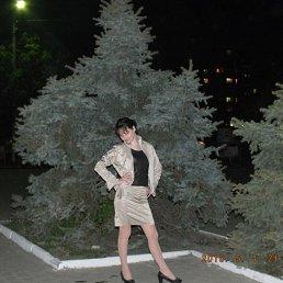 Анна, 24 года, Лозовая