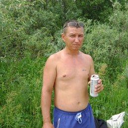 kent, 44 года, Теплогорск