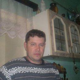 Виктор, 42 года, Королево