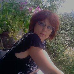 Ольга, 61 год, Дрогобыч