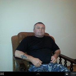 Анатолий, 56 лет, Руза