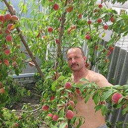 Персик дома