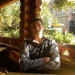 Arnold, 27 лет, Берегово