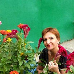 Светлана, 56 лет, Константиновск