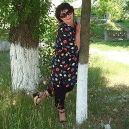 Людмила, 61 год, Светловодск