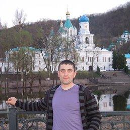 александр, 33 года, Славяногорск