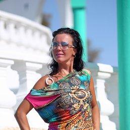 ELENA, 41 год, Жуковский - фото 4