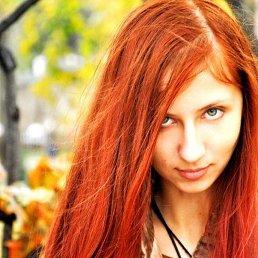Эббигейл, 24 года, Краснодар
