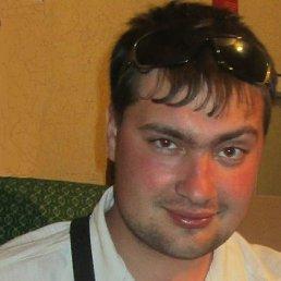 Владимир, 28 лет, Жердевка