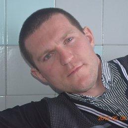 Юрий, 37 лет, Кстово