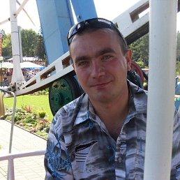 Юрий, 41 год, Мга