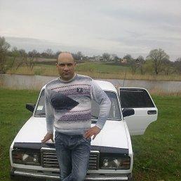 Игорь, 44 года, Лозоватка